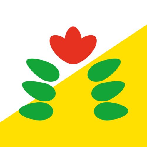 Bandera de Tabasco